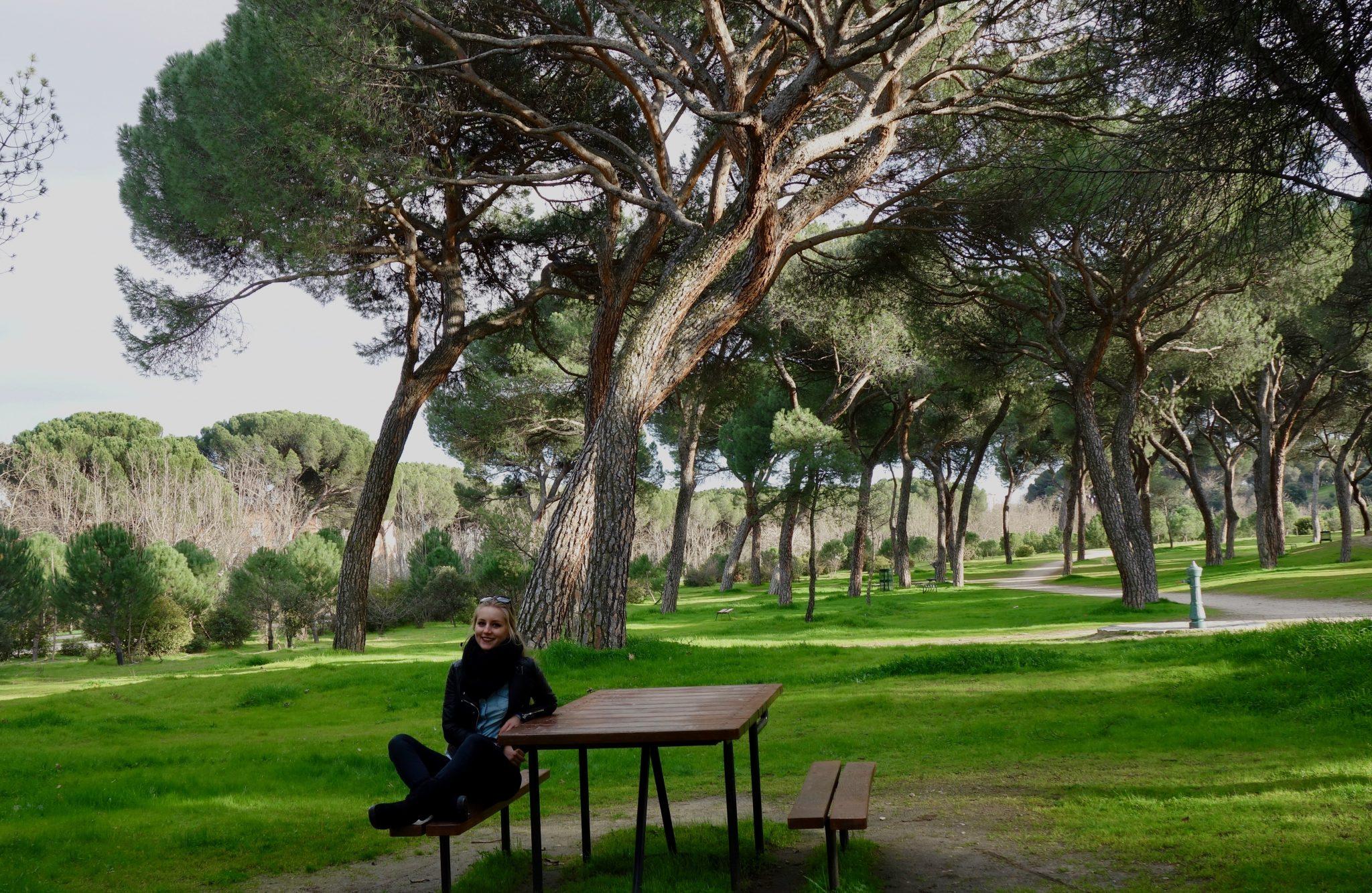 Pack dir genügend Nahrungsmittel mit ein und verbringe im Park Casa de Campo einen entspannten, naturreichen Tag.