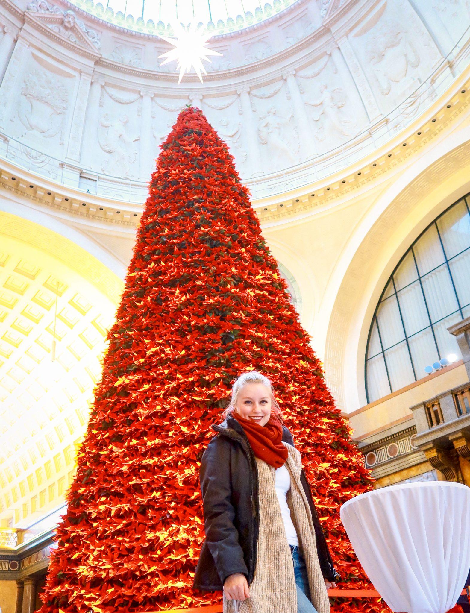 Wiesbaden, Sternschnuppenmarkt: Eines meiner persönlichen Highlights und nicht nur, weil man sich dort wunderbar aufwärmen kann.