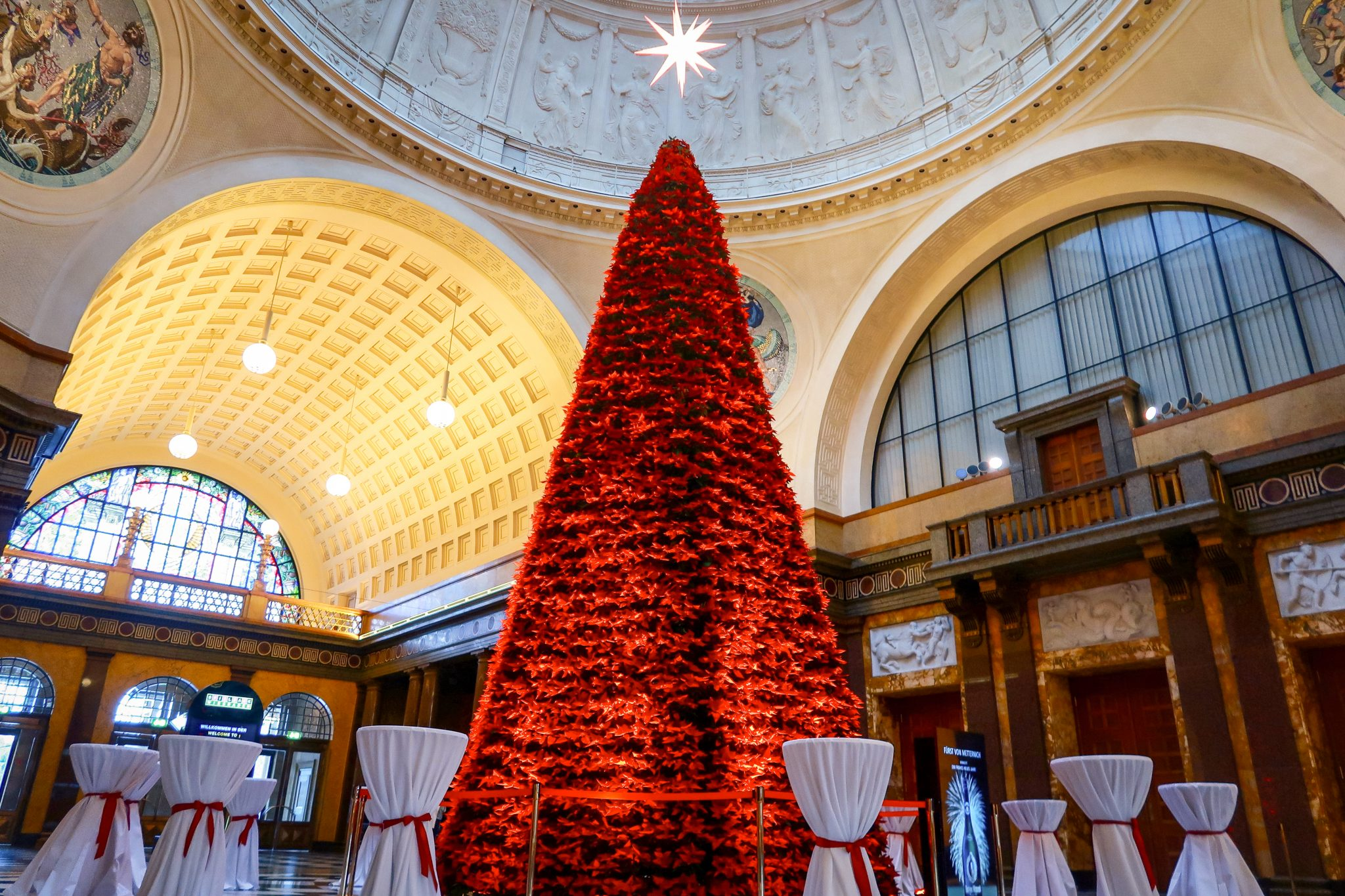 Wiesbaden, Sternschnuppenmarkt: Der Baum ist 8,15 Meter hoch mit über 2.000 frischen roten Weihnachtssternen geschmückt.