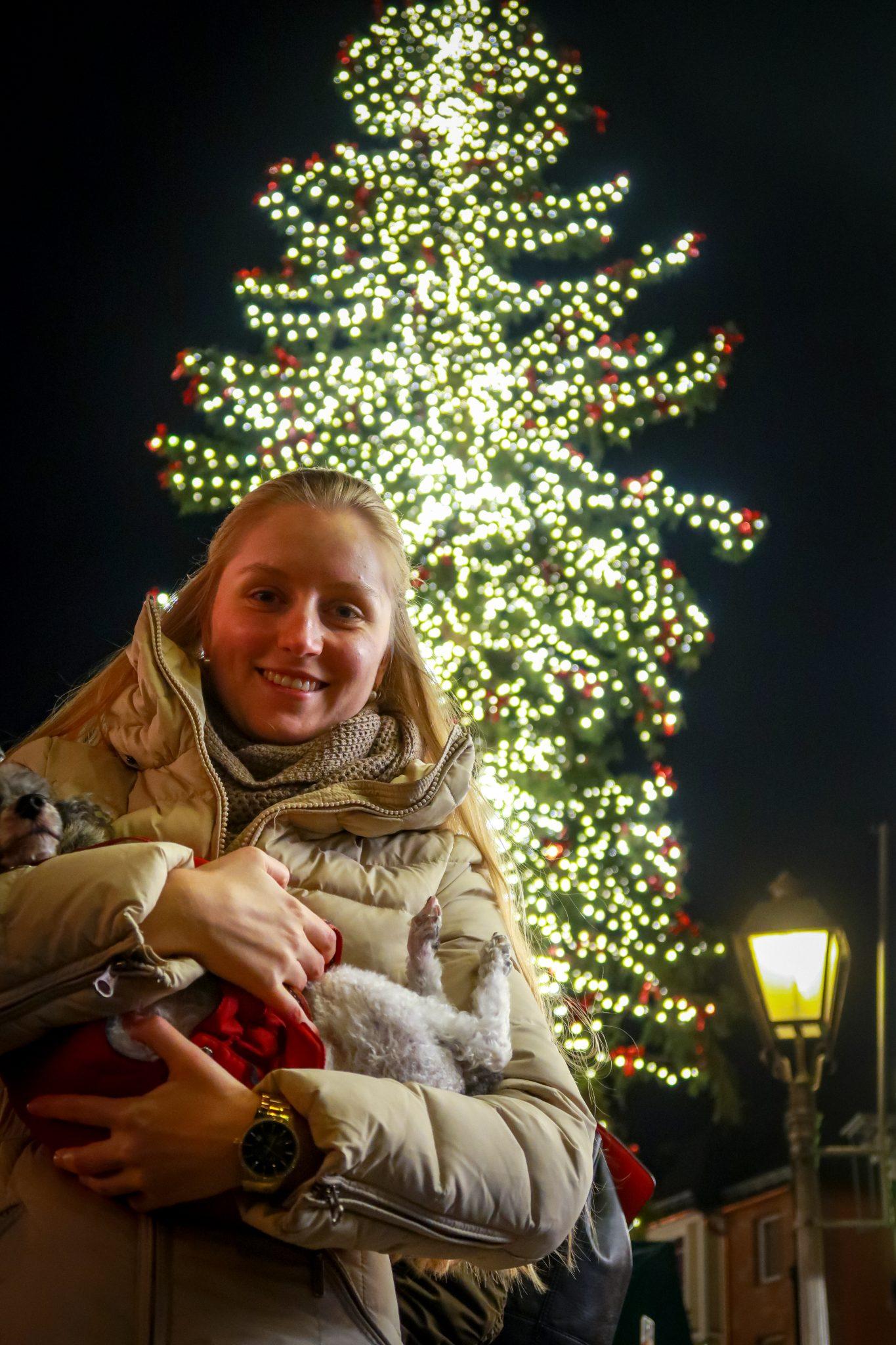 Frankfurter Weihnachtsmarkt: Der Weihnachtsbaum ist so gut erkennbar, weil er mit Tausenden von Glühbirnen geschmückt wurde