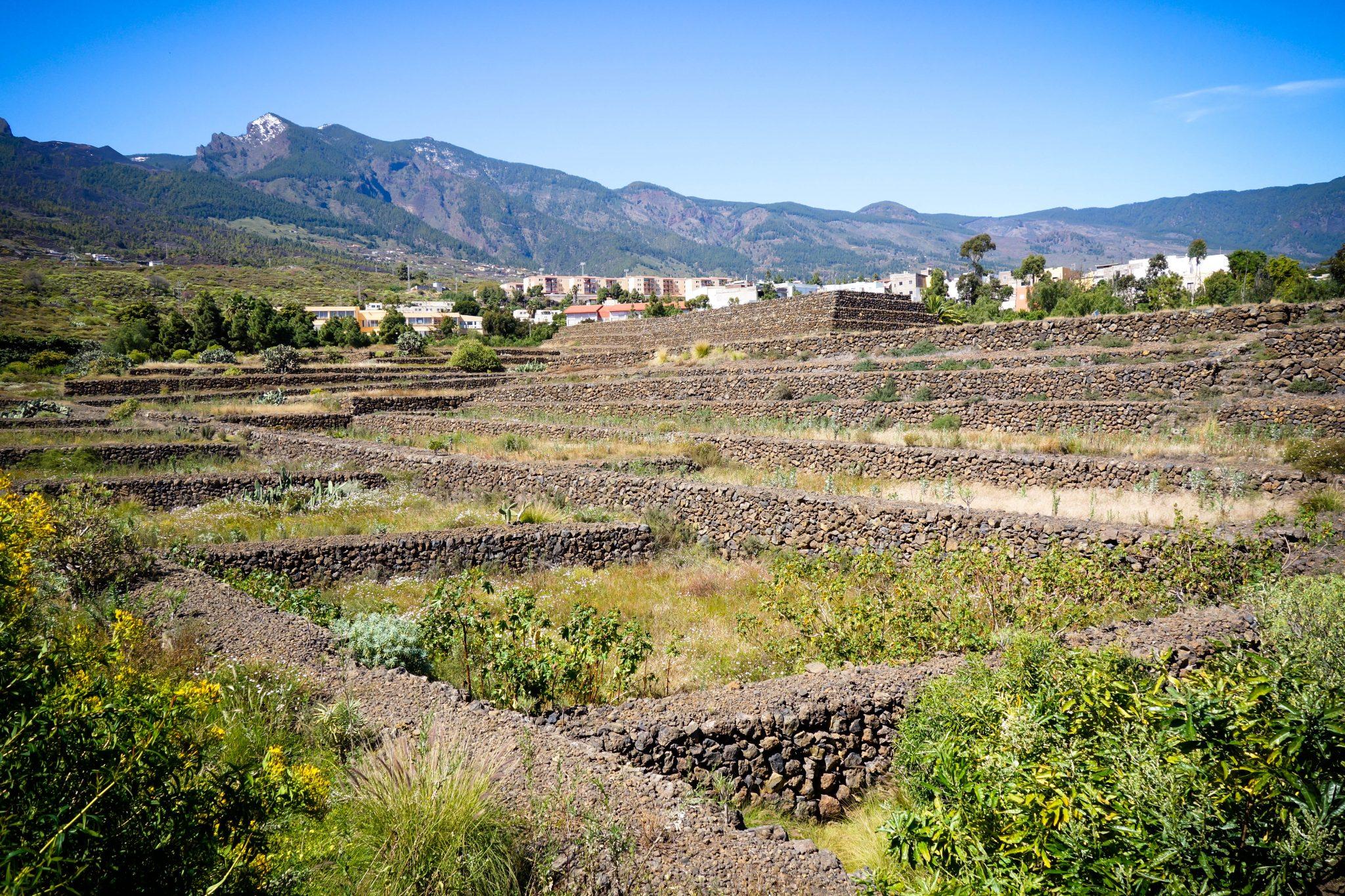 Teneriffa, Pyramiden von Guimar: ... ich konnte es nicht glauben und musste es mit meinen eigenen Augen sehen!