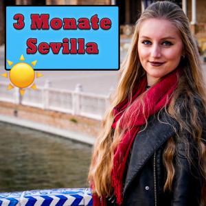 Halbzeit! Bereits seit 3 Monaten wohne ich in Sevilla für mein Auslandssemester an der Universidad de Sevilla!