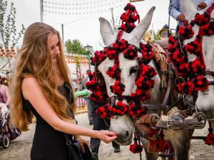 Den wahren Charkter Andalusiens wirst du erst mit der Feria bemerken. Eine atemberaubende Atmosphäre!