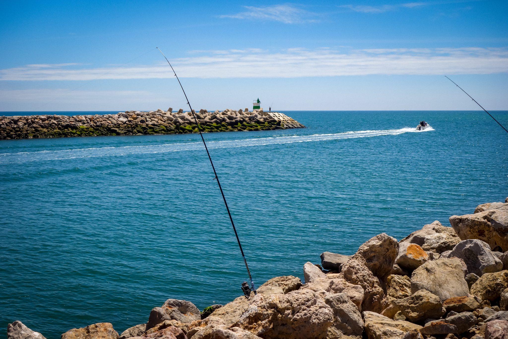 Frischer kann der Fisch nicht sein: Fischer auf Tamira Island, Portugal