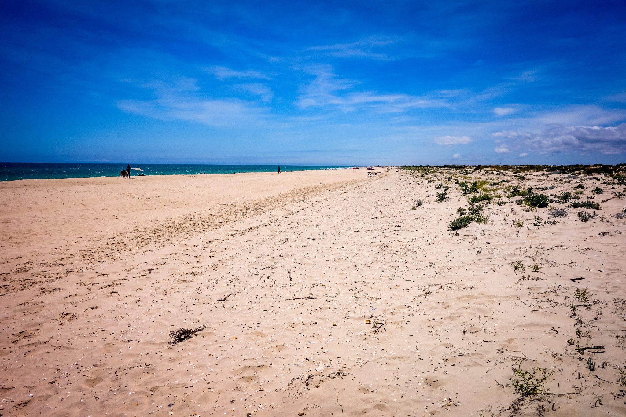 Je länger du läufst, desto weniger Menschen begegnest du. Auf Tavira Island kannst du ca. 10 Kilometer am Strand entlang laufen!