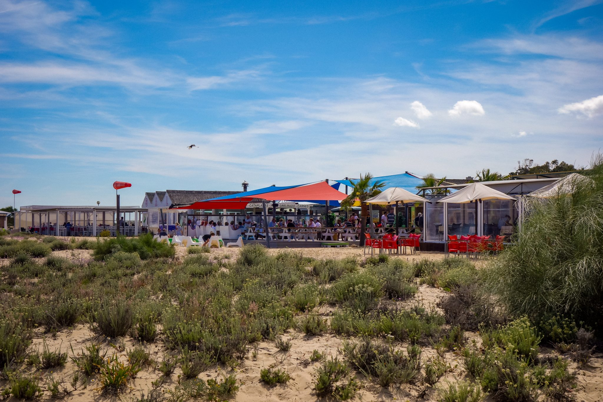 """Direkt am """"Anfang"""" (dort wo die Fähre ankommt) findest du sehr viele Restaurants, Tavira Island, Portugal"""