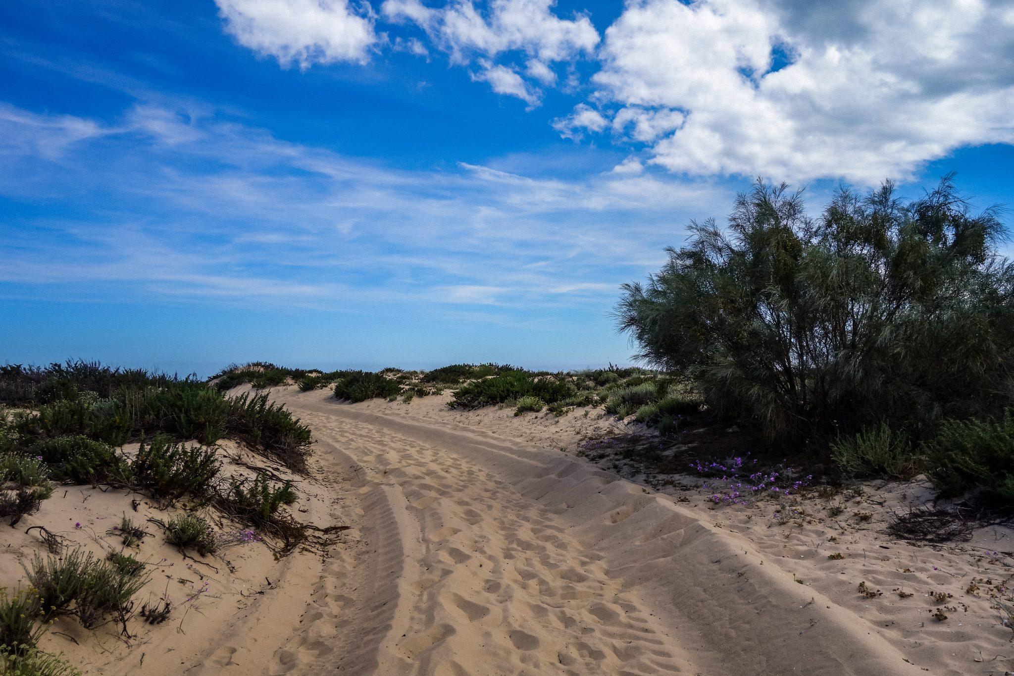 Die Straßen von Tavira Island, überall nur Sand!