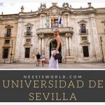 Dein Auslandssemester an der Universidad de Sevilla
