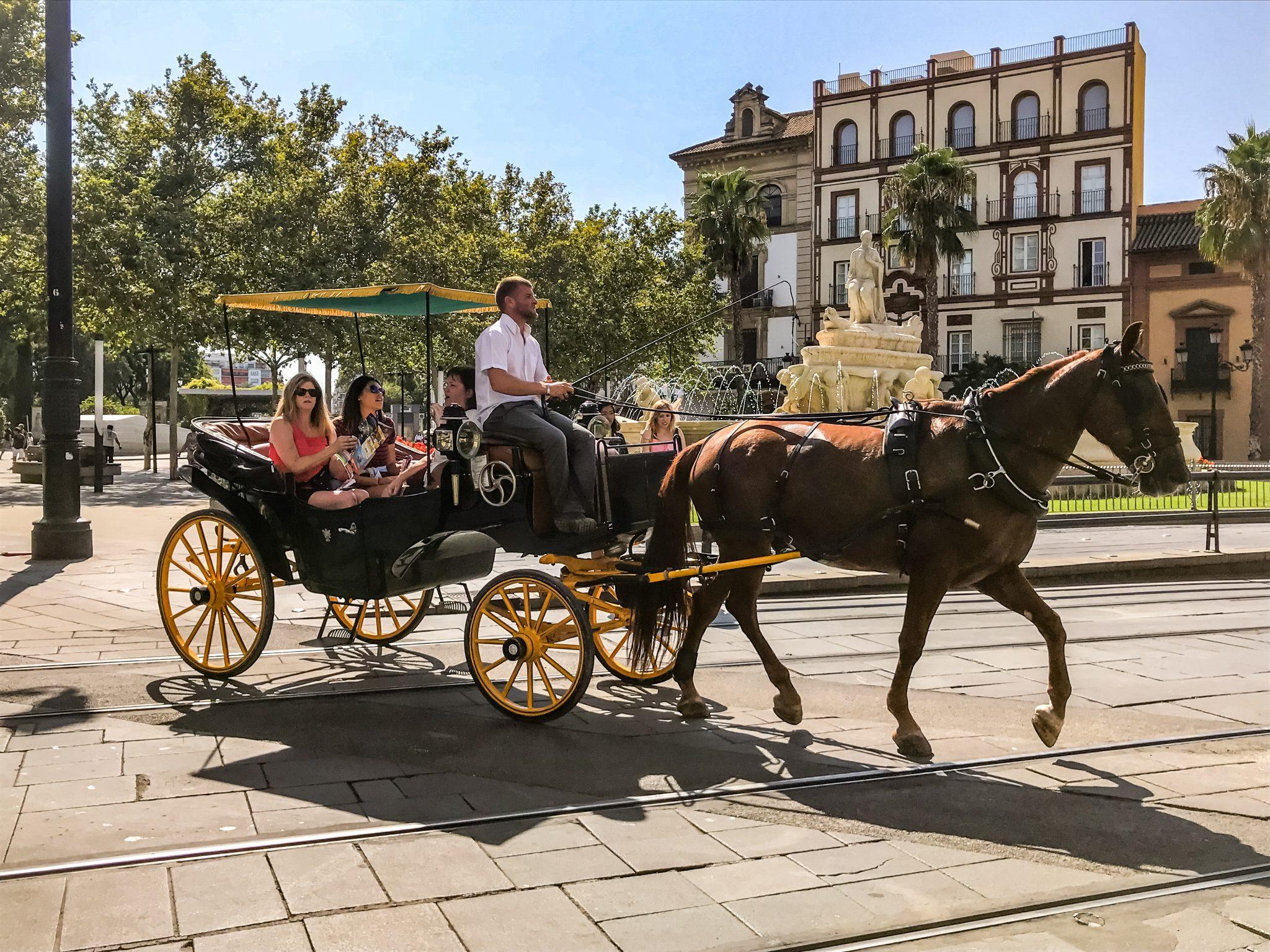 Die Kutschen in Sevilla sind ein sehr teures und beliebtes Verkehrsmittel für Touristen.