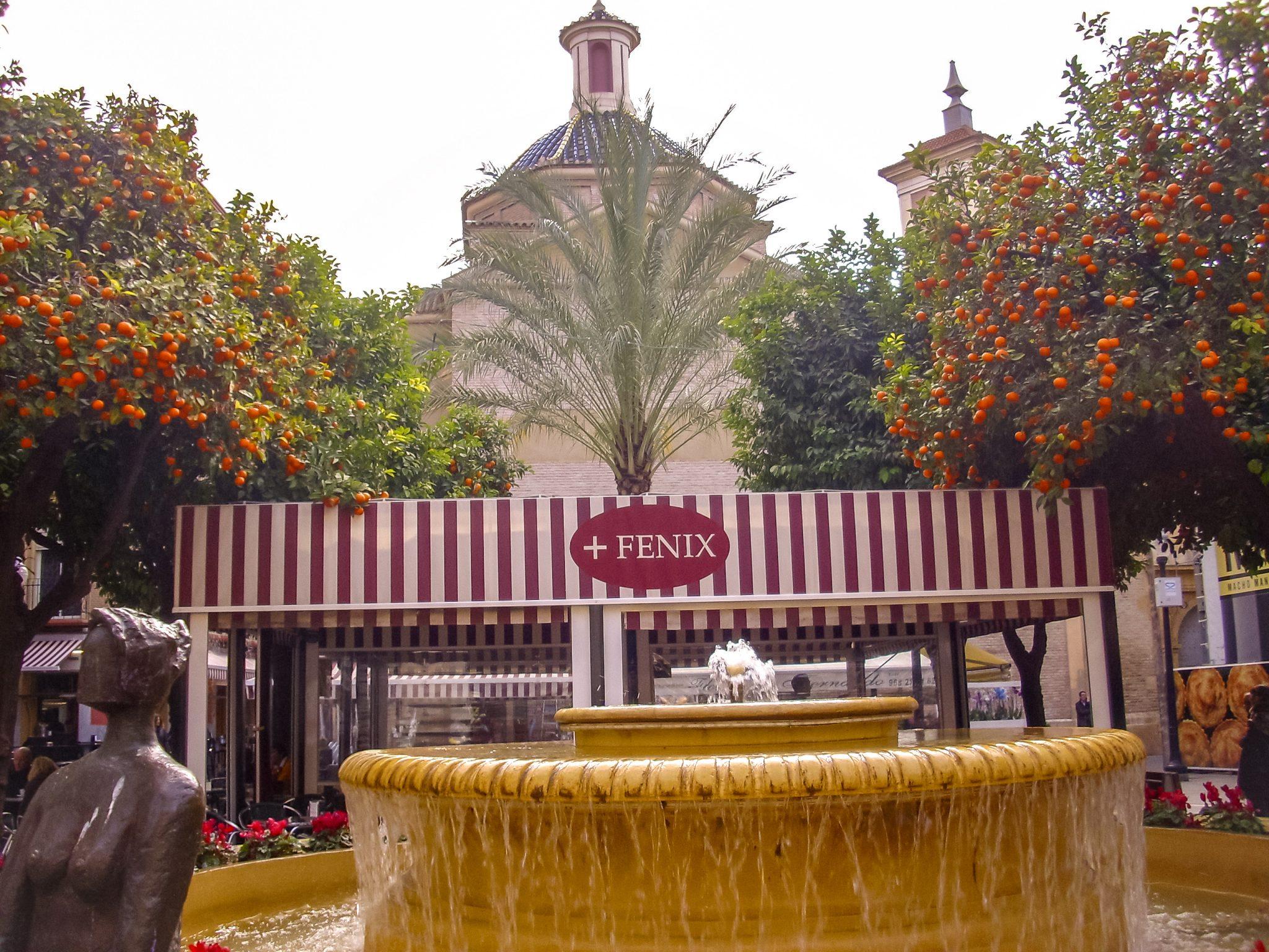 Entspanne dich ein wenig beim Plaza de las Flores in Murcia.
