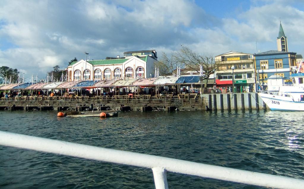 Die Aussicht vom Boot auf den Markt in Valdivia und die vielen Fische, Robben und Vögel, welche hungrig auf den Feierabend und ein paar Fische gehofft haben, war toll.