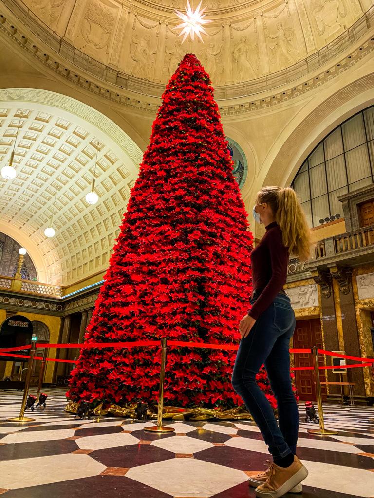 Der 8,15 Meter hohe Weihnachtsbaum im Kurhaus wird jedes Jahr von mir besucht.